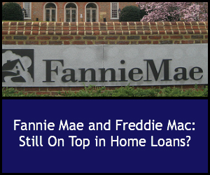 the collapse of fannie mae and